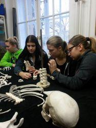 Exkurze do Hrdličkova muzea