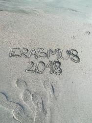 Erasmus+ Anglie 2018 - 3. mobilita